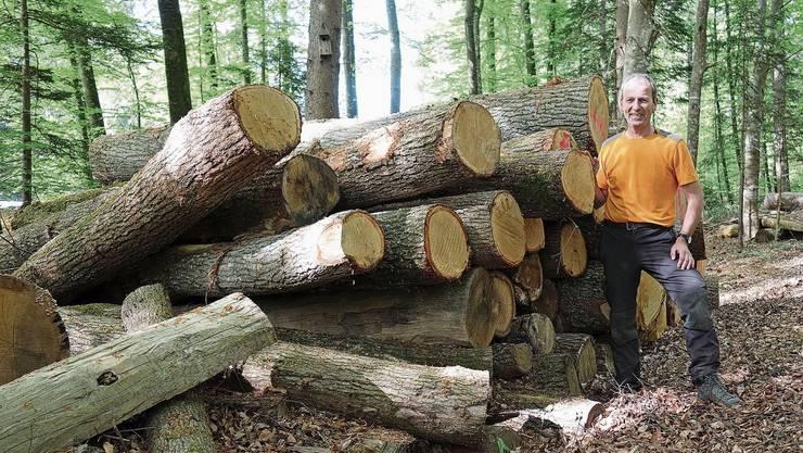 Stefan Staubli sagt, die fehlenden Niederschläge setzten dem Wald massiv zu.