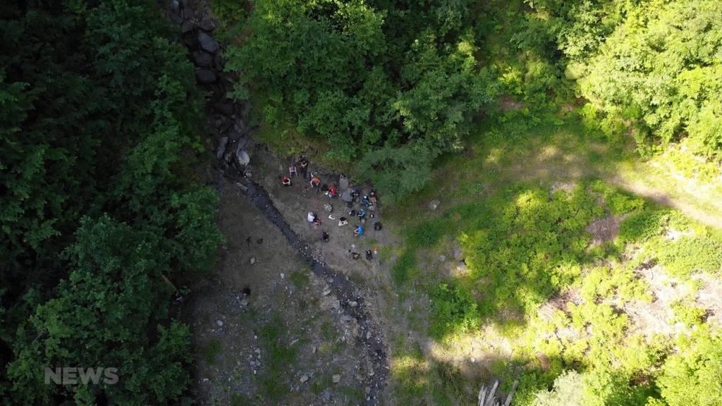 Bergwaldprojekt: Freiwillige helfen im Berner Oberland den Wald zu pflegen