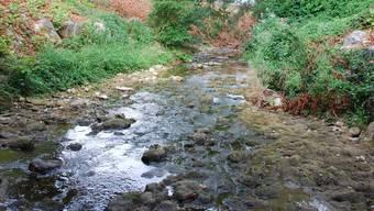 Eine erste geringe Menge Öl war am Montagabend im Homburgerbach festgestellt worden, wie die Baselbieter Bau- und Umweltschutzdirektion am Dienstag mitteilte. (Symbolbild)