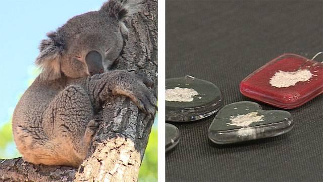 Koalas, Wallabys und Co / Tierisches Andenken