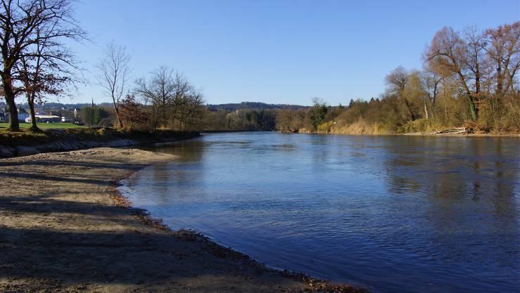 Unterhalb der Sandbank will Pro Natura Aargau einen neuen Reussarm ausheben, es soll eine Auenlandschaft entstehen. Dominic Kobelt