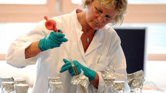 Eine Laborangestellte prüft Tomaten auf EHEC-Bakterien