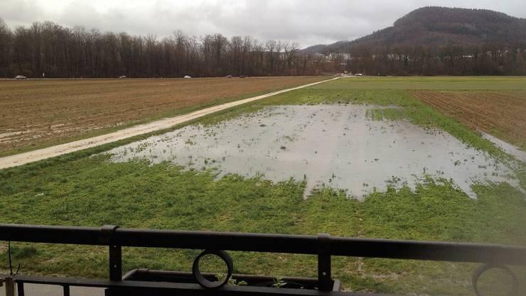 Nach den Regenfällen diesen Januar sammelte sich das Wasser – auch verschmutztes – auf dem Feld bei der Hüslimattstrasse.