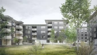 Herzstück des Siegerprojekts «Gartengeschichten» bilden vier grosszügige Gartenhöfe, die von vier- bis fünfgeschossigen Gebäuden umgeben sind.
