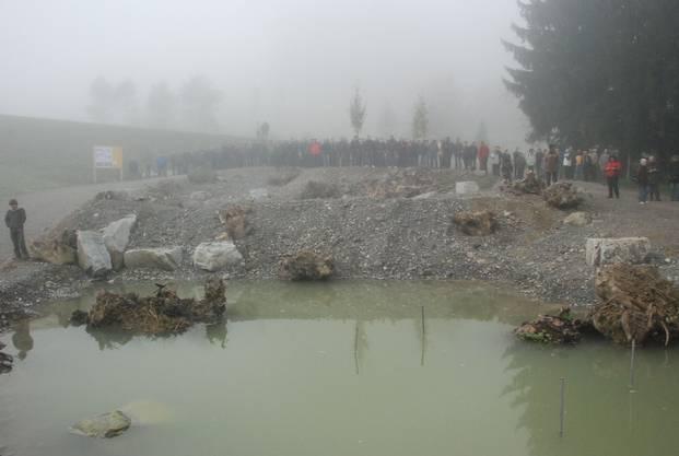 Als ökologische Ausgleichsmassnahmen wurden Amphipienteiche angelegt