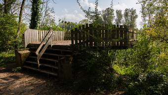 Die Aussichtsplattform im Auenschutzpark: Der Kanton hat diese um 90 Meter gegenüber dem bewilligten Projekt verschoben.