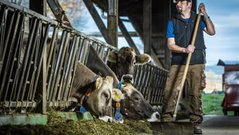 Bauer Alex Füglistaller in Wohlenschwil musste mehr Kühe verkaufen als in anderen Jahren, weil er zu wenig Futter hat, um alle durch den Winter zu bringen.