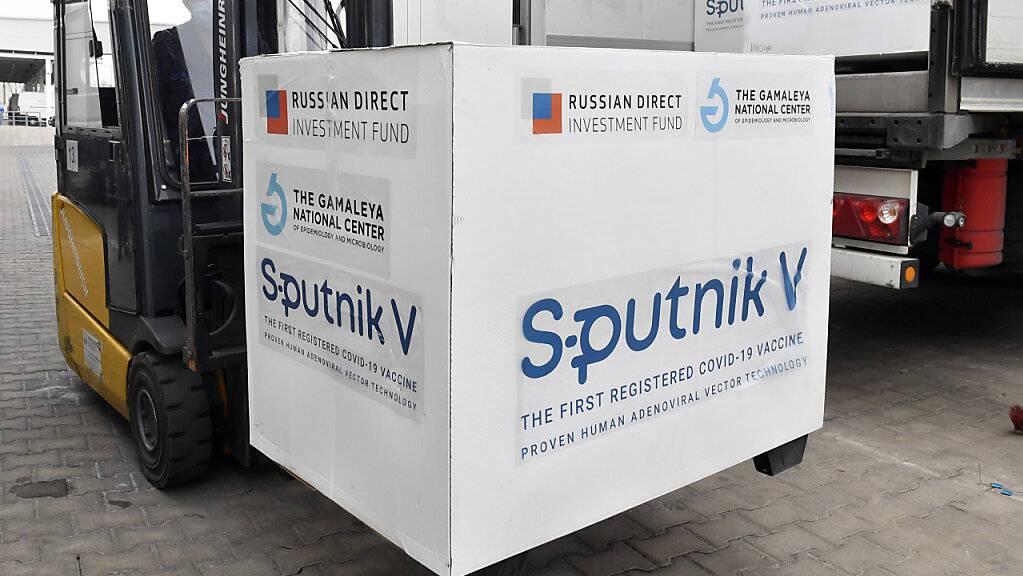 ARCHIV - Kisten mit Dosen des russischen Corona-Impfstoffs Sputnik V werden in einem Lagerhaus des ungarischen Pharmagroßhändlers Hungaropharma mit einem Gabelstapler aus einem Lastwagen geladen. Foto: Zoltan Mathe/MTI/AP/dpa