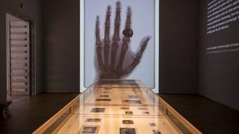 """Es ist die erste Ausstellung zur Geschichte der Fotografie im Kunstmuseum Basel: """"The Incredible World of Photography der Sammlung Ruth und Peter Herzog""""."""