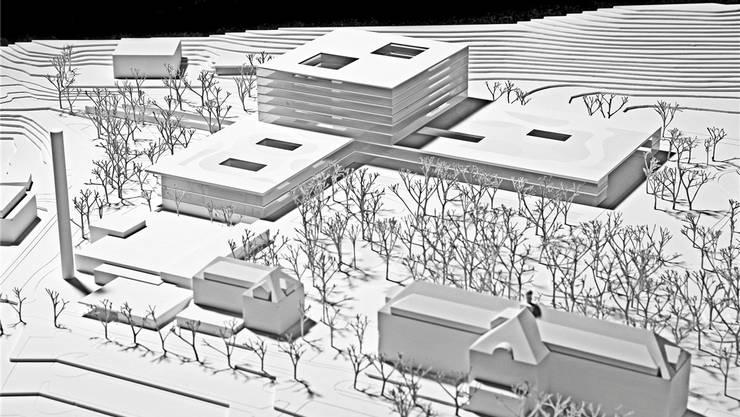 Das aktuelle Projekt des Bürgerspital-Neubaus. Im Vordergrund rechts der denkmalgeschützte Altbau.