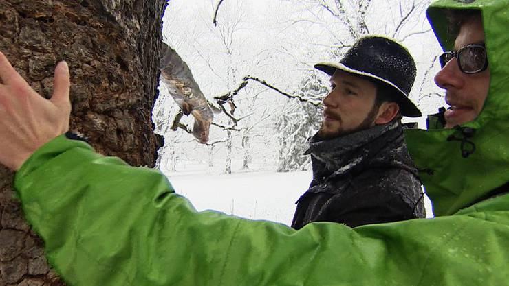 David Naef und Valentin Graf bei einem ihrer Bäume im Eichenwald in Bubendorf.