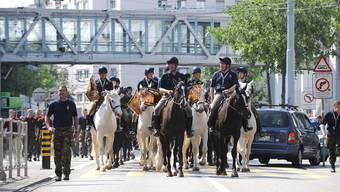 Ab zur Probe: Auf dem kurzen Weg vom Messezentrum zum Kasernenareal haben Reiter und Pferde einen Eindruck von Basel bekommen.