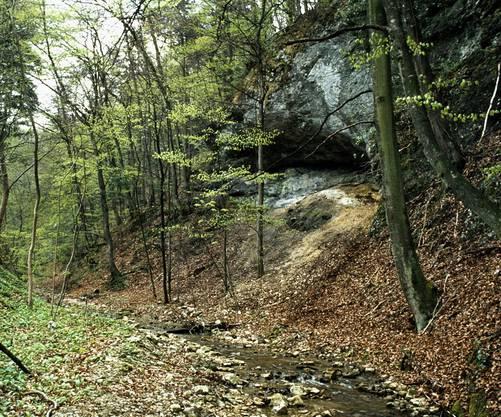 Die Fundstelle im Chesselgraben heute. Im Jahr 1985 fand hier eine archäologische Ausgrabung statt. Dabei kamen Spuren altsteinzeitlicher Jäger zum Vorschein (Foto: Jürg Stauffer)