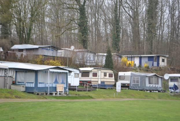 Der Campingplatz liegt neben dem Naturschutzgebiet Bachtalen, in Gehdistanz zum Rhein. Auch das Schwimmbad ist direkt nebenan. Der Campingplatz hat 50 Dauerstellplätze. 30 Stellplätze gibt es für Touristen, 15 für Zelte. Die Saison dauert von 15. März bis 31. Oktober.
