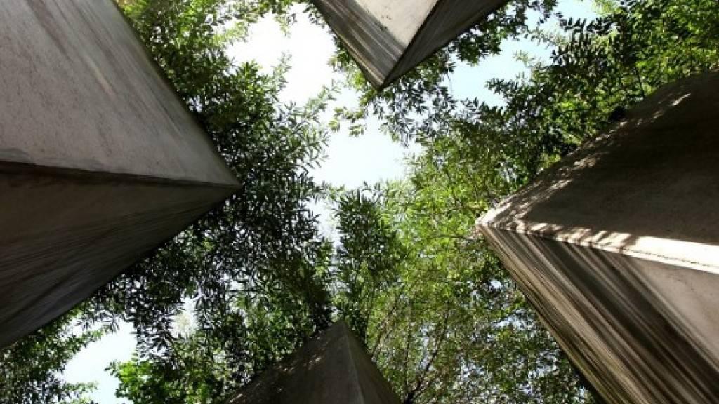 Empa entwickelt klimaneutrales Herstellungsverfahren für Zement