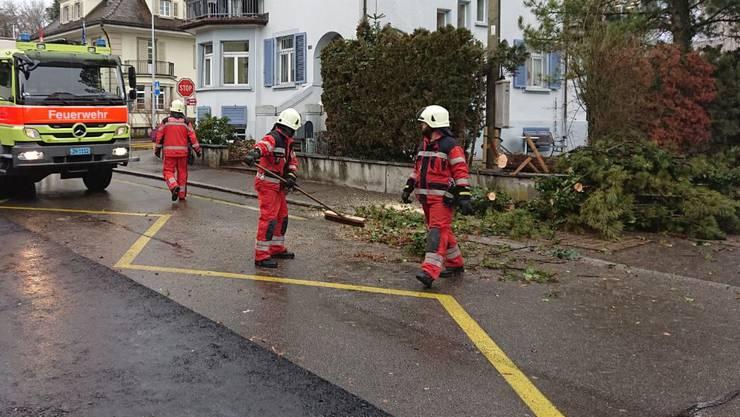 Die Feuerwehren Geroldswil-Oetwil sowie Dietikon mussten je einmal wegen eines Baums auf der Strasse ausrücken.