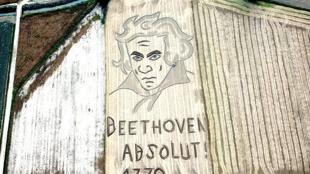 Zum Geburtstag von Beethoven - Riesenbild in Acker gezeichnet