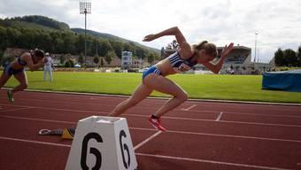 Auch 2015 werden wieder nationale Spitzenathleten am Start stehen.