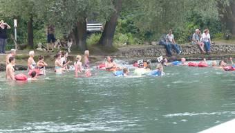 Vom Inseli aus starteten die Teilnehmer des Rheinschwimmens.
