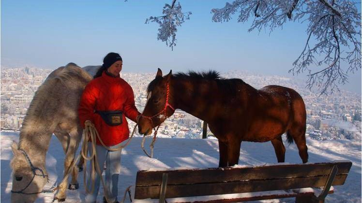 Esther Granitzer und ihre beiden Pferde Osheba und Osheila bei den Drei Weiern in St.Gallen.