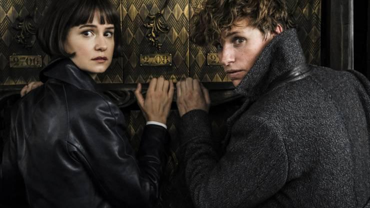 """Das Epos """"Fantastic Beasts: The Crimes of Grindelwald"""" übernahm am Wochenende vom 15. bis 18. November 2018 in der Schweiz die Spitze der Kinocharts. (Archiv)"""