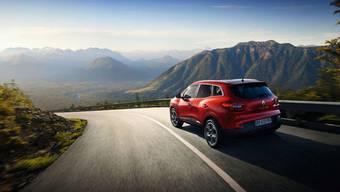 Werbung weltfremd: Das Auto - nicht in der verstopften Agglomeration, sondern in unberührter Natur.