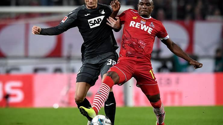 Hoffenheims Stefan Posch (links) gegen Jhon Cordoba vom FC Köln