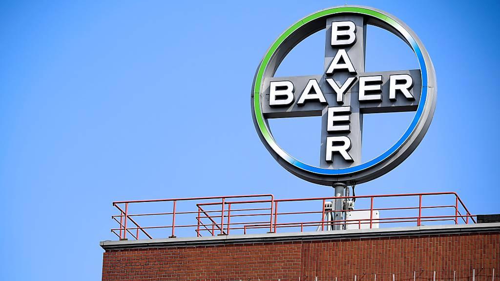 Bayer stärkt Geschäft mit Zelltherapien durch Milliardenübernahme. (Archiv)