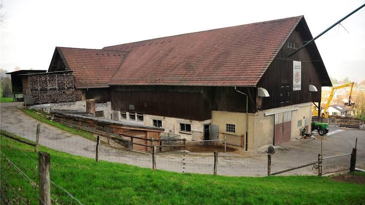 Eine abgespeckte, kostengünstigere Variante des Siegerprojekts «Gradatus» soll laut der Planungskommission an die Stelle des alten Viehstalls treten. Ueli Wild