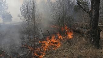 Fast fünf Wochen nach dem Ausbruch sind die Brände um das havarierte Atomkraftwerk Tschernobyl in der Ukraine noch nicht gelöscht. (Archivbild)