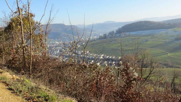 Der Blick ins Dorf  (Frenkendorf)