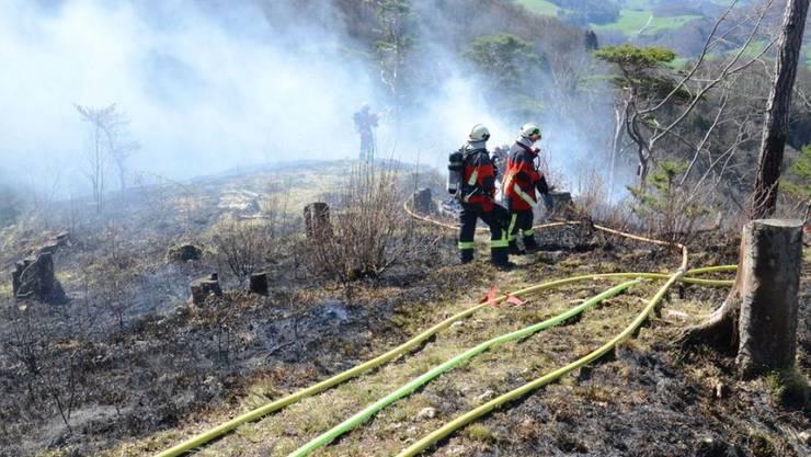 In der Schweiz sind in den vergangenen Tagen mehrere kleine Wald- und Flurbrände ausgebrochen, so auch in Häfelfingen im Baselbiet.
