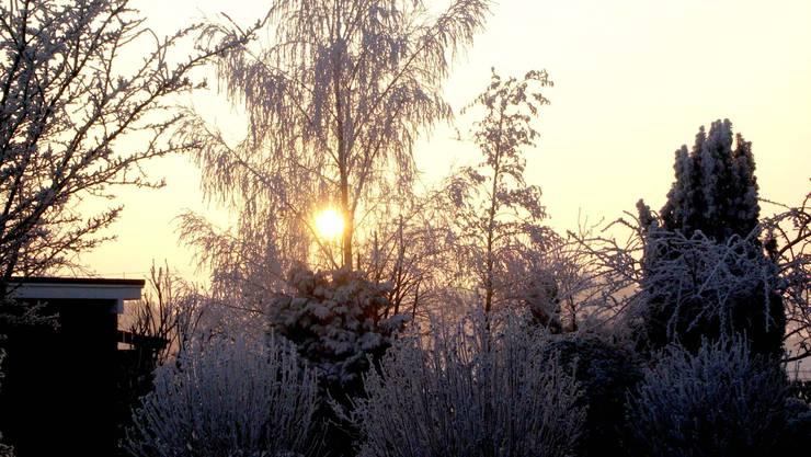 Natur_vor_der_Haustüre_so_gut.jpg