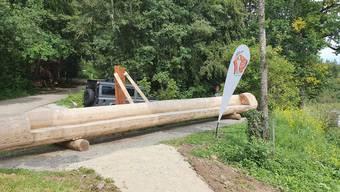 Zum Jubiläum wird auf dem Stierenberg eine Langbank von 9,75 Metern eingeweiht.
