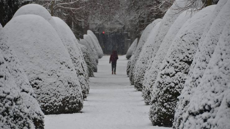 Schnee in Baden am 6. Januar 2021