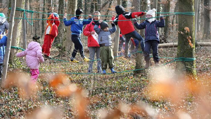 Ein Waldkindergarten-Angebot solle - zu einem späteren Zeitpunkt - für alle Aarauer Kinder geschaffen werden, liessen die Befürworter des Projektierungskredites durchblicken.