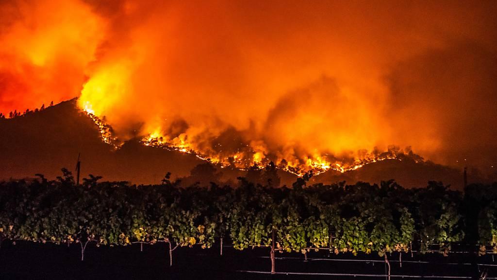 Brände in Nordkalifornien wüten weiter – mindestens vier Tote