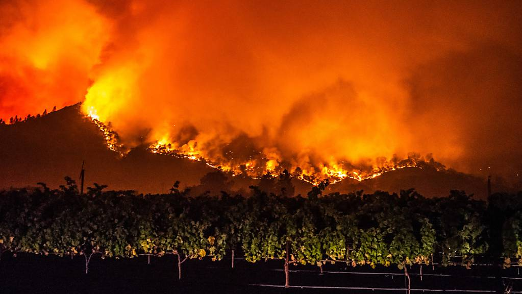 Von den bewaldeten Hügeln in der Nähe von Calistoga nahe von Weinreben schlagen Flammen des «Glass»-Feuers empor.