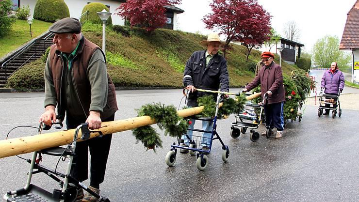 Den Bewohnern eines Seniorenwohnheims in Österreich reichts: Sie schnappen ihre Rollatoren und holen ihren gestohlenen Maibaum zurück.