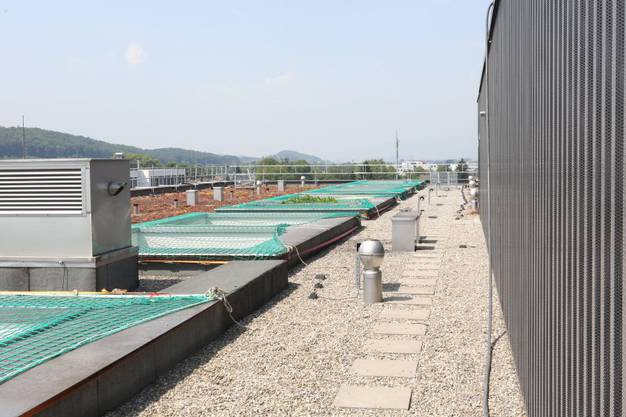 Dach des «Perron 1»
