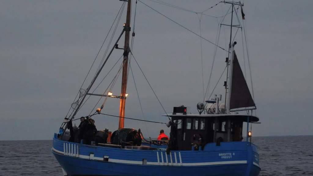 Seenotretter mussten zwei Schweizer in der Ostsee von ihrem Kutter retten, weil sie von einem giftigen Fisch gestochen wurden. (Symbolbild)