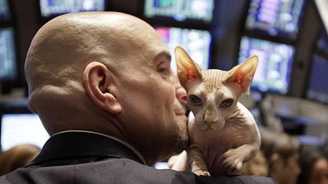 Katzenjammer auf dem New Yorker Börsenparkett