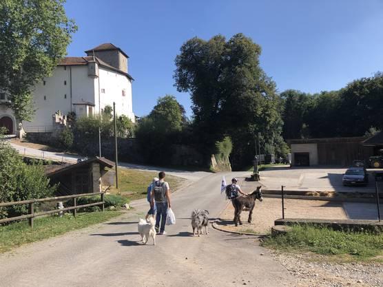 Der Weg führt vorbei am Schloss Wildenstein.