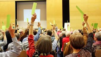 Die Mitglieder des Altersheimvereins Eigenamt sind sich bei den Neuwahlen des Vorstands weitgehend einig.