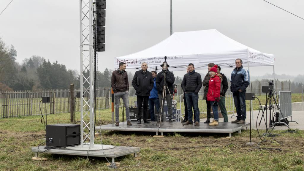 Grünes Licht für Bau von Windpark