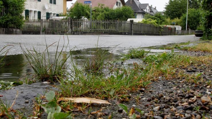 Teerplatten in den Gärten des Quartiers Elsässli sind Ursache für die Schadstoffbelastung.