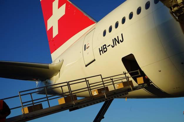 Seit Ende März hat die Swiss etwa 800 reine Frachtflüge durchgeführt und 27000 Tonnen transportiert.