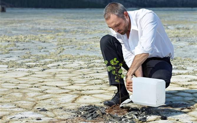 Einen Baum pflanzen. Zweifellos eine gute Idee, wenn nichts mehr da ist. Aber wie macht man es, damit er auch wächst? Und was tut man, bis er gross ist?