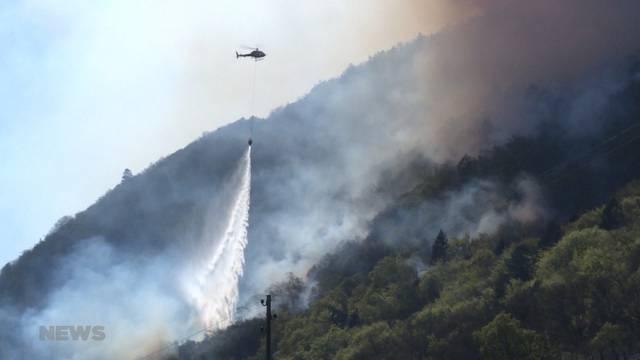"Waldbrandgefahr im April ""erhöht"""
