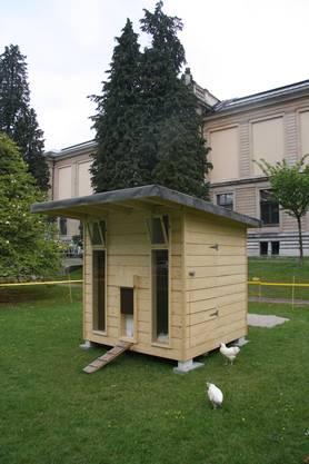 Das neu platzierte Hühnerhaus